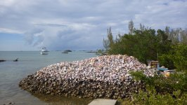 Fox Town Conch Shell Mountain Bahamas