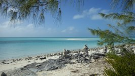 Saddle Cay Area